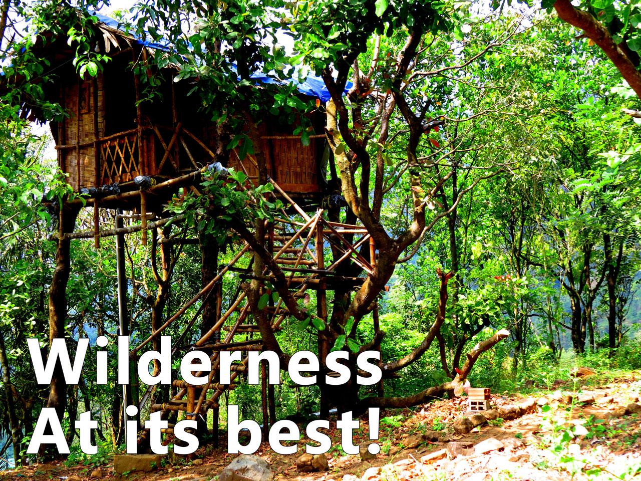 Wilderness at its best at ReginaSilva