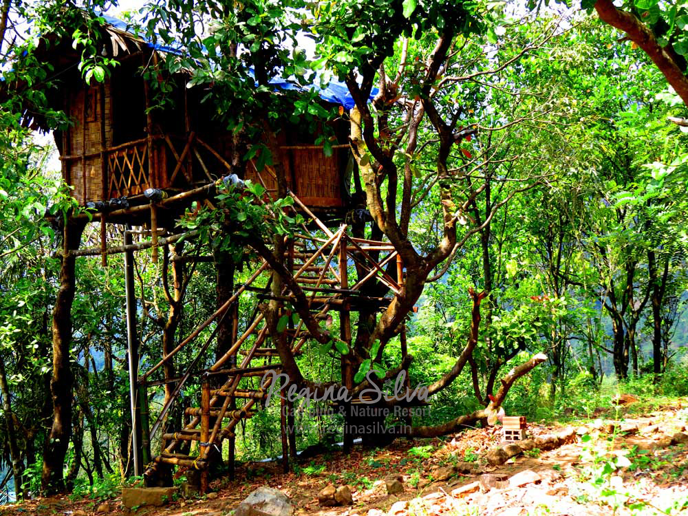Treehouses at ReginaSilva Nature Resort