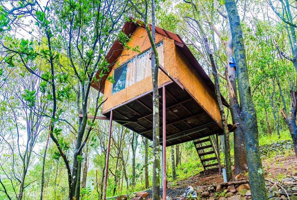 Treehouses at ReginaSilva Camping & Nature Resort, Paithalmala